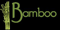 Bamboo Belgium logo